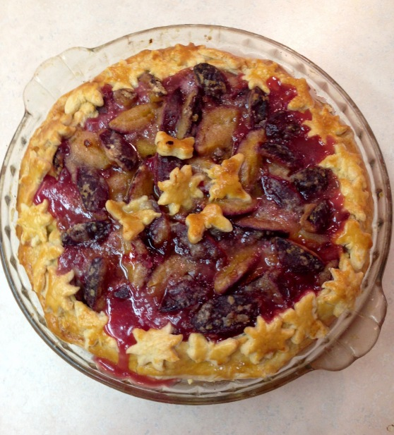 Damson Plum Pie