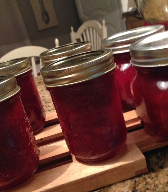 homemade cran-apple sauce